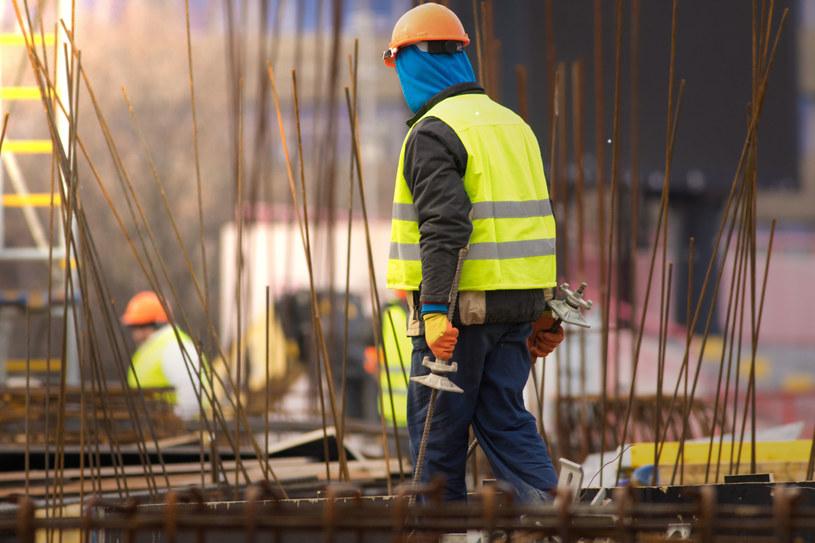 Nowe niemieckie prawo imigracyjne ma na celu rozszerzenie dostępu do rynku pracy dla specjalistów z krajów spoza UE /123RF/PICSEL