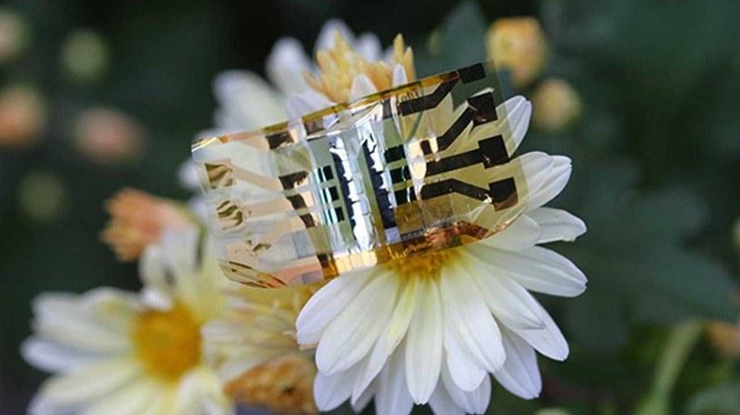 Nowe ogniwo słoneczne / fot. SlashGear /materiał zewnętrzny