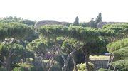 """""""Nowe Pompeje"""" ukryte są w Rzymie - mówią eksperci"""