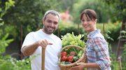 Nowe przepisy dla  działkowców i rolników