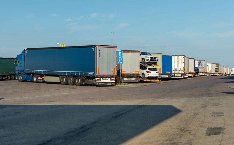 Nowe przepisy dotyczą samochodów ciężarowych i dostawczych /Arkadiusz Ziółek /East News