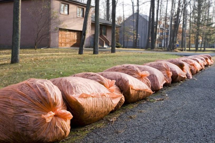 Nowe przepisy wprowadzą chaos w systemie odbioru odpadów? /123RF/PICSEL