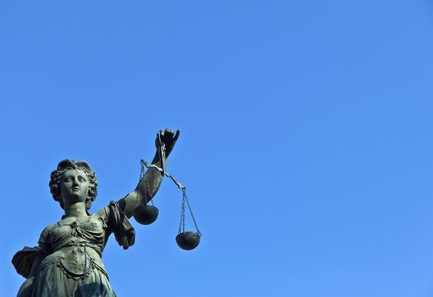 Nowe przepisy wprowadzają tzw. system automatycznej wykonalności /©123RF/PICSEL
