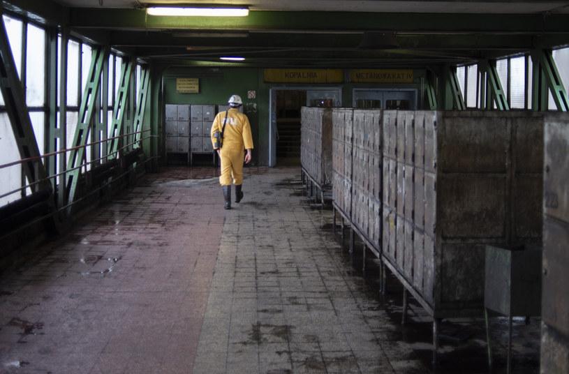 Nowe przypadki koronawirusa m.in. w kopalniach Borynia i Bolesław Śmiały /Łukasz Kalinowski /East News