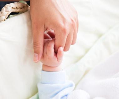 Nowe świadczenie dla rodziców: 1 tys. zł miesięcznie przez rok po urodzeniu dziecka