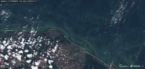 Nowe usługi oparte na danych z kosmosu pomogą w problemach z klimatem?