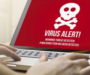 Nowe wirusy atakują, co 4,2 sekundy