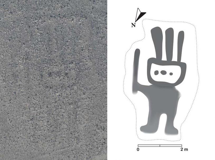Nowo odkryty rysunek z Nazca /materiały prasowe