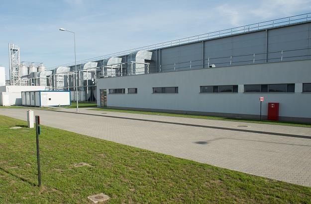 Nowo otwarta fabryka chipsów Pringles w Łódzkiej Specjalnej Strefie Ekonomicznej w Kutnie /PAP