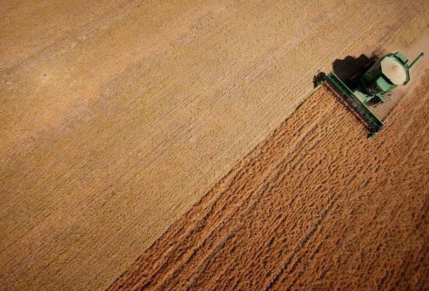 Nowoczesna złożyła do TK wniosek o zbadanie nowelizacji ustawy o ustroju rolnym /PAP