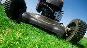 Nowoczesne podkaszarki mogą zastąpić kosiarkę przy pielęgnacji małego trawnika