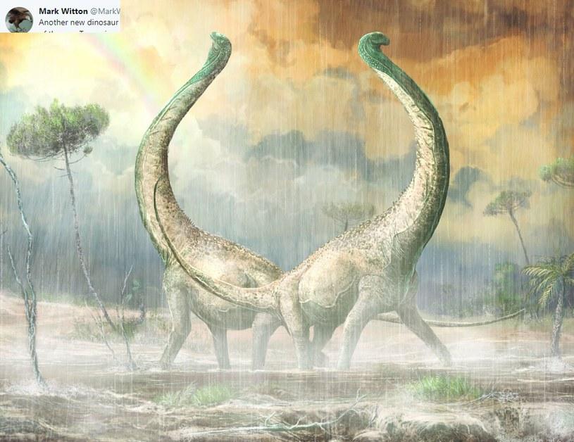 Nowy gatunek tytanozaura /