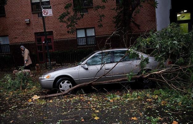 Nowy Jork, 29 października 2012 /AFP