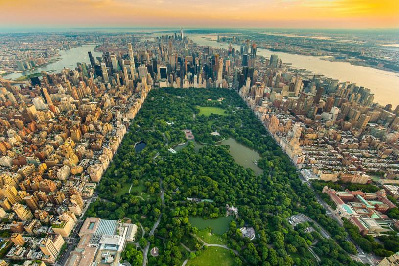 Nowy Jork to, według ekspertów, miasto zagrożone zalaniem! /123RF/PICSEL