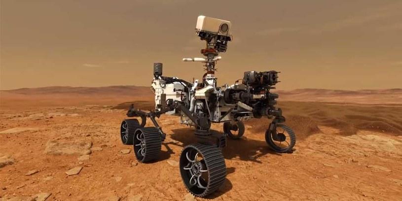 Nowy, marsjański łazik NASA /materiały prasowe
