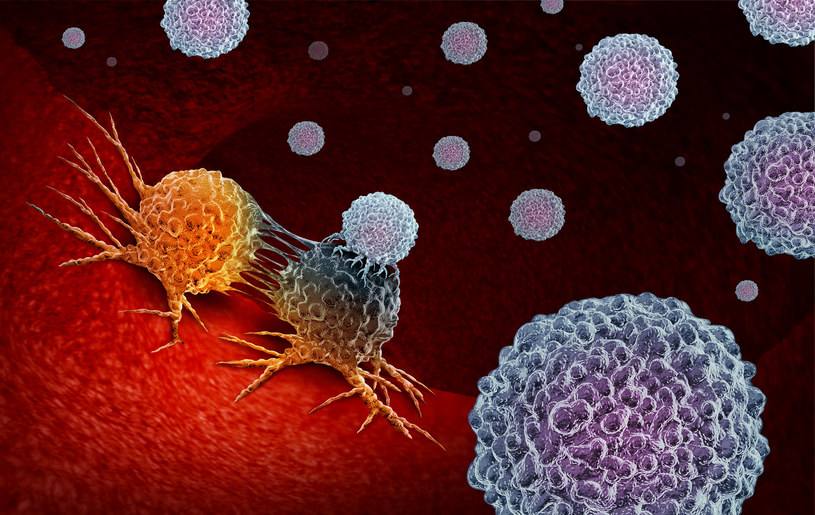 Nowy pomysł na niszczenie nowotworów /123RF/PICSEL