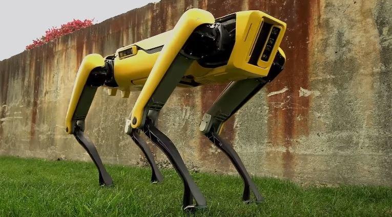 Nowy robot wygląda dużo nowocześniej i przyjaźniej od poprzednika /YouTube