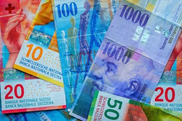 Nowy Rzecznik Finansowy obiecuje pomoc frankowiczom /©123RF/PICSEL