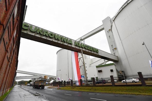 Nowy silos w Cukrowni Kluczewo w Stargardzie /PAP