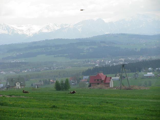 Nowy Targ czeka na geotermalne ciepło /INTERIA.PL