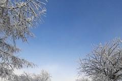 Nowy (Zimowy) Rok na Jurze
