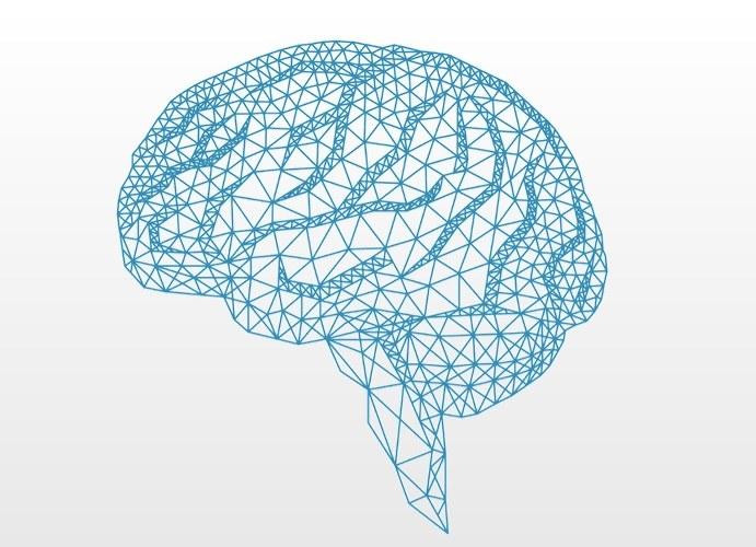 Numenta to najbardziej zaawansowana sztuczna inteligencja /materiały prasowe