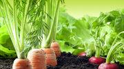 Nutritarianizm - najzdrowsza dieta świata?