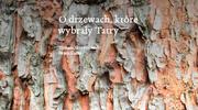 O drzewach, które wybrały Tatry, Tomasz Skrzydłowski, Beata Słama