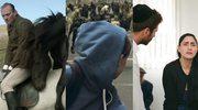 O koniach, psach i ludziach