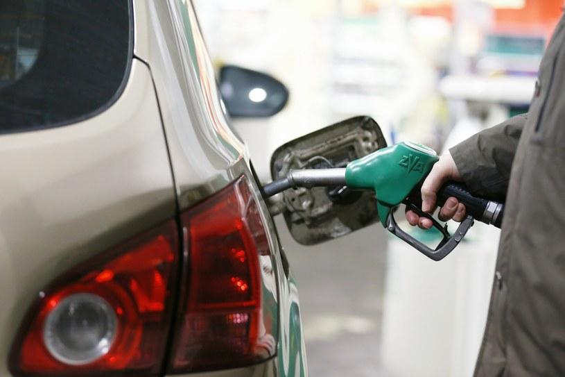 O niskich cenach paliw możemy już powoli zapominać /KAROL SEREWIS /East News