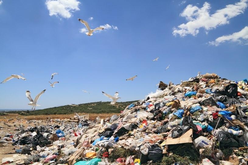 O niszczenie ubrań oskarżane są zarówno sieciówki jak i luksusowe marki /123RF/PICSEL