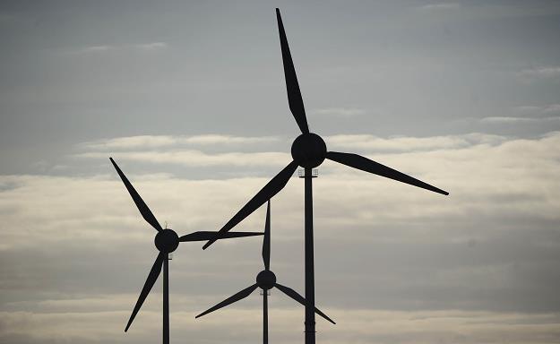 Obawa przed inwestowaniem w odnawialne źródła energii bierze się głównie ze zmienności prawa /AFP