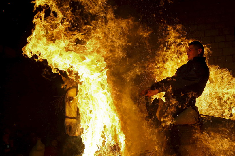 Obchody Luminarias 2016: Hiszpańskie święto ognia i zwierząt /REUTERS/Susana Vera /Agencja FORUM