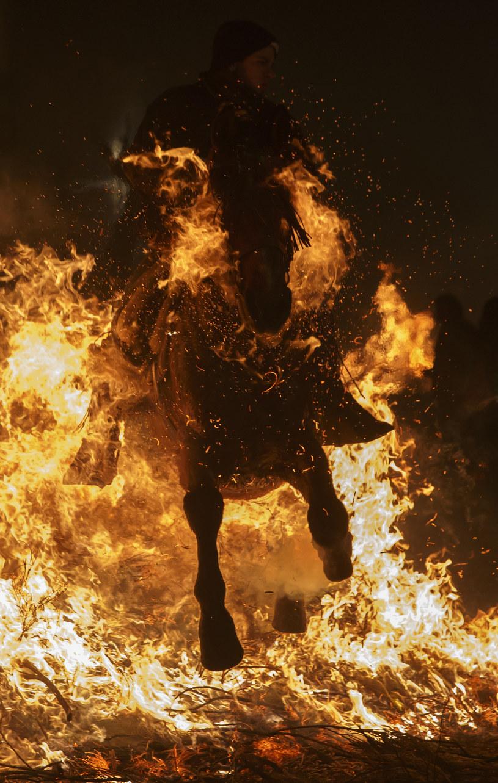 Obchody Luminarias 2016: Hiszpańskie święto ognia i zwierząt /REUTERS/Juan Medina /Agencja FORUM