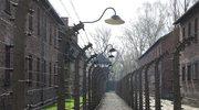 Obcokrajowcy próbowali ukraść cegły z Muzeum Auschwitz-Birkenau