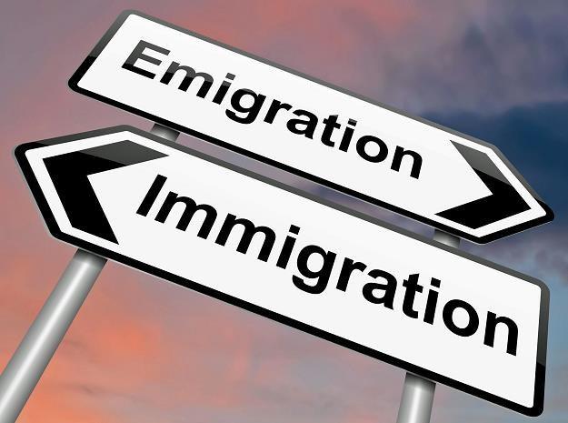 Obecna fala emigracji przybrała nową jakość - emigrują całe rodziny /©123RF/PICSEL