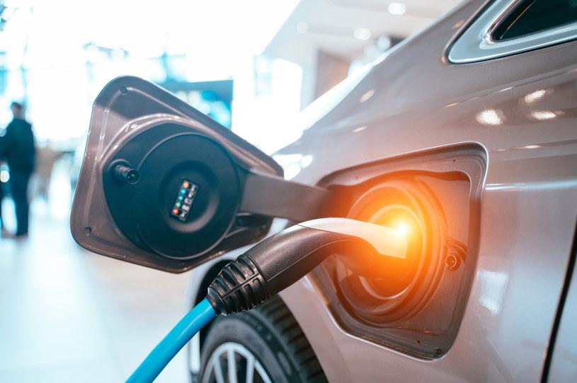 Obecnie 18 proc. krajowych firm korzysta z co najmniej jednego auta w pełni elektrycznego /123RF/PICSEL