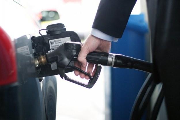 Obecnie za litr benzyny Pb95 musimy zapłacić średnio 4,63 PLN/l /© Panthermedia