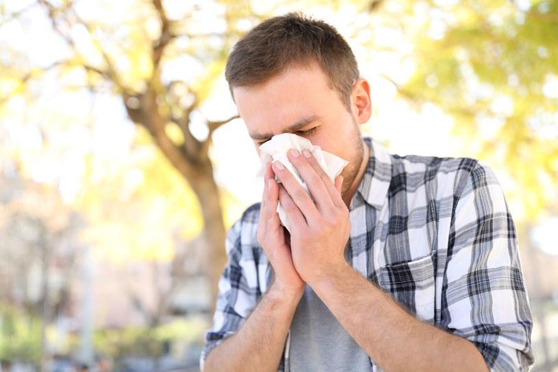 Objawy alergii również zależne są od pogody /123RF/PICSEL