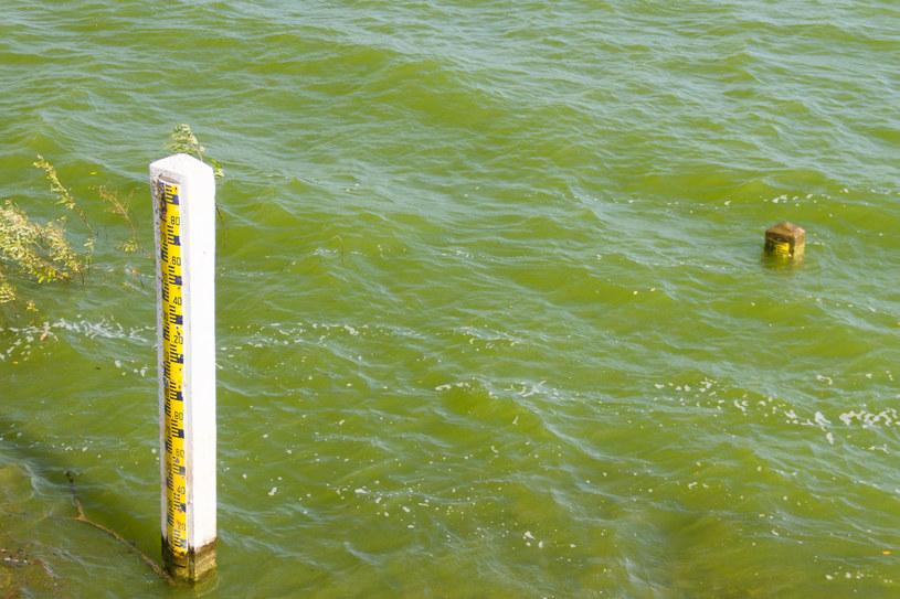 Obniża się poziom wód /123RF/PICSEL