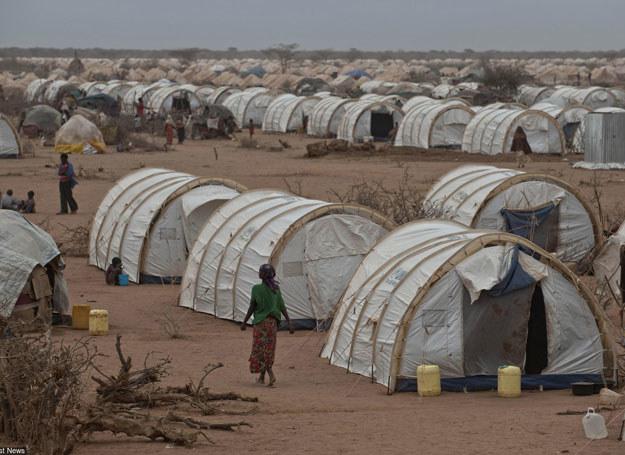 Obóz dla uchodźców w Kenii/ Zdjęcie ilustracyjne /Finistre Arnaud/ABACA /East News