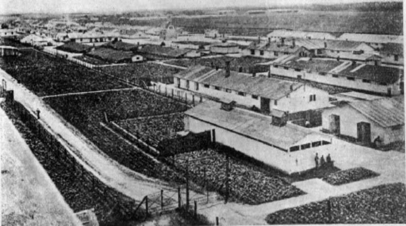 Obóz koncentracyjny w Talerhofie /INTERIA.PL/materiały prasowe