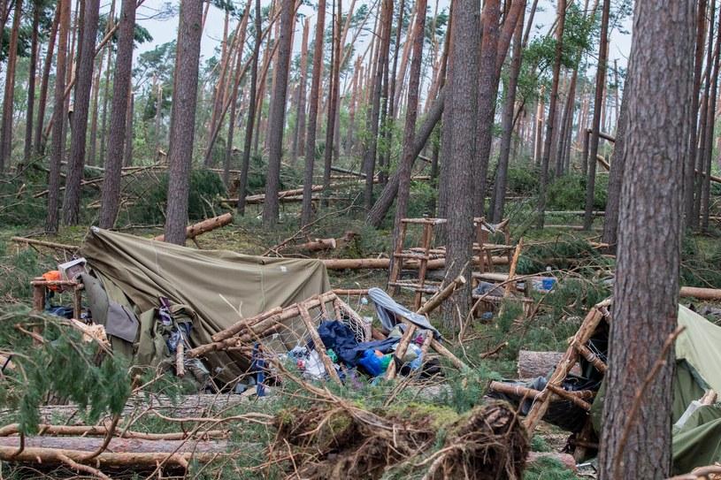 Obozowisko harcerskie w Suszku zostało w 2017 r. doszczętnie zniszczone /Piotr Hukalo /East News