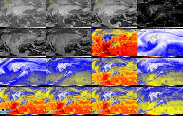 Obraz terenu USA w 16 kanałach aparatury ABI (Advanced Baseline Imager) /NOAA/NASA /materiały prasowe