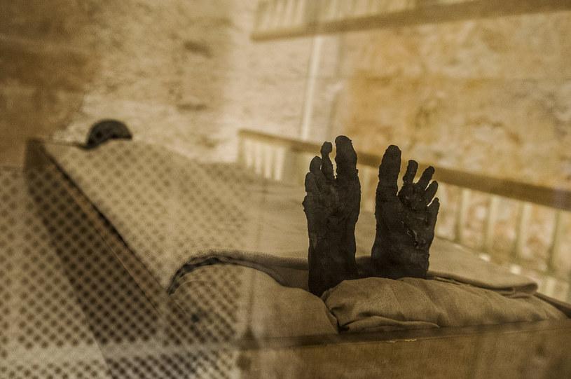 Obrazowanie egipskich mumii będzie jeszcze łatwiejsze /AFP
