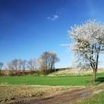 Obrót ziemią rolną po 30 kwietnia będzie jednak możliwy?