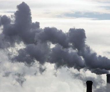 Oburzenie ekologów: Polska hamuje cały kontynent