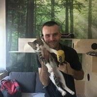 Ochota na kota, czyli wielka akcja adopcyjna w Warszawie