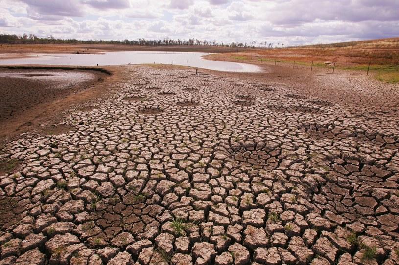 Ocieplenie klimatu wraz z innymi czynnikami będzie prowadzić do pustynnienia ziemi - ostrzega raport BBC /Jonathan Wood /Getty Images