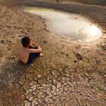 Ocieplenie klimatu zwiększa ryzyko zakażeń pasożytniczych
